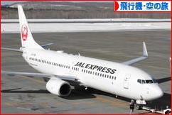 にほんブログ村 旅行ブログ 飛行機旅行・空の旅へ
