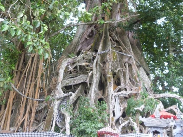 Bali's deeply spiritual culture dates back hundreds of years. Image: beautyfulbali.blogspot.com