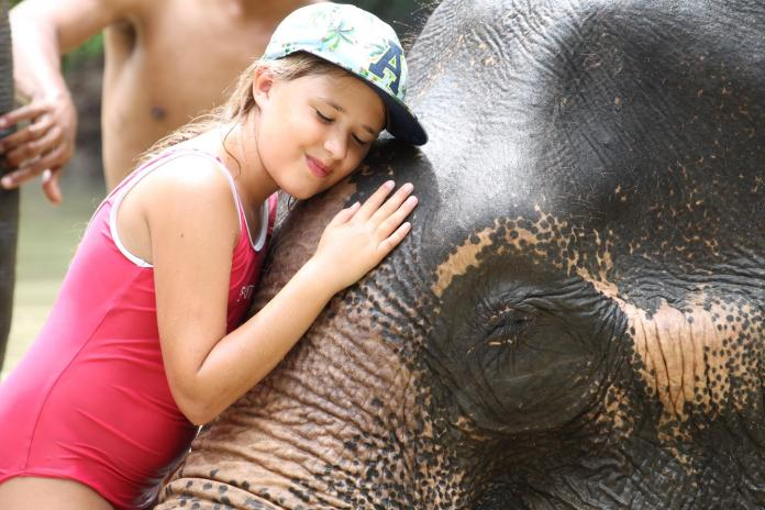 family things to do in Thailand in 2019