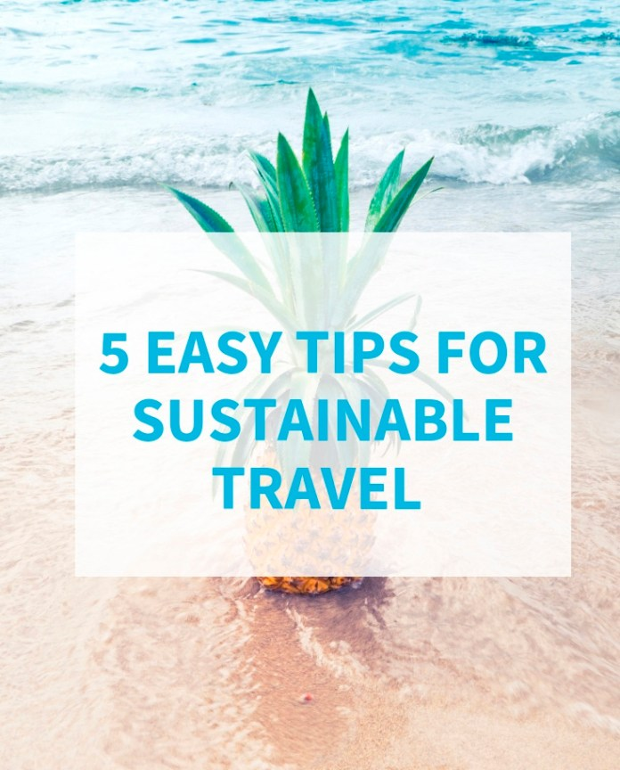 tips for sustainable travel in 2019