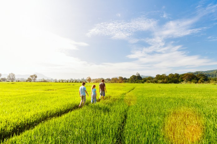 Are you feeling inspired for your family vacation in Sri Lanka?