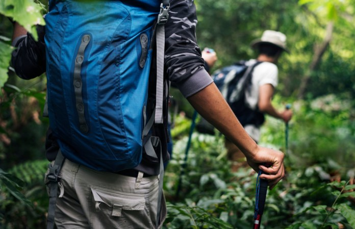 Spend summer 2019 in Thailand by trekking through the country's rich jungles