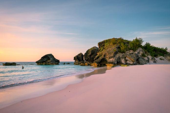 Bermuda - pink beach