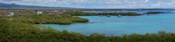 Santa Cruz Island, Puerto Ayora Harbor