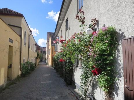 scenic street in the old city
