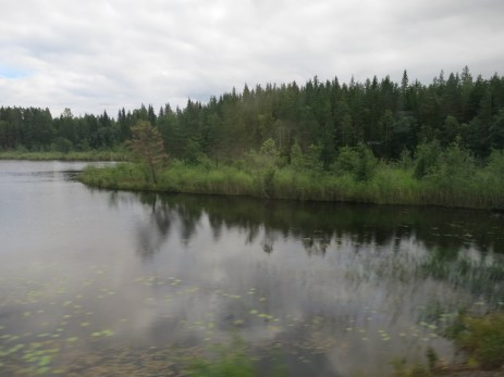 view from the train on a drizzly day