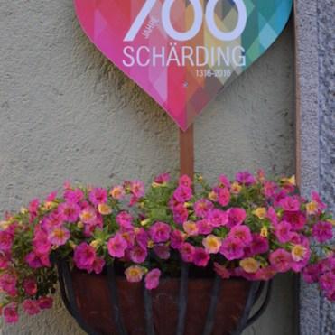 Schleimertest Schärding, Most-unterwegs.de, travelblog