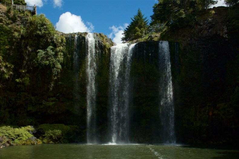 Whangarei Falls Scenic Reserve