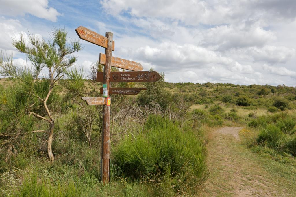 Wildnis Trail - Etappe 1 - Höfen bis Einruhr