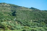 <h5>Church among olive-trees</h5><p>In the middle of nowhere.</p>