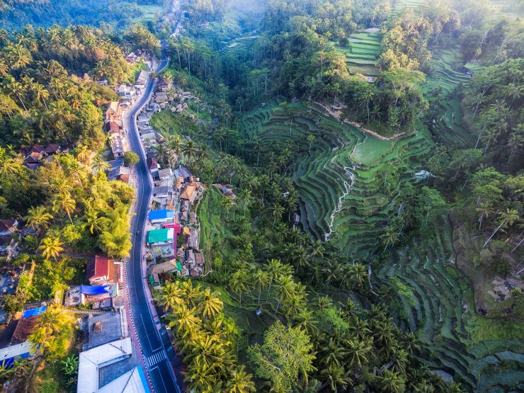 Indonesia Tegalalang Rice Terraces near Ubud by drone 2 by Michael Matti