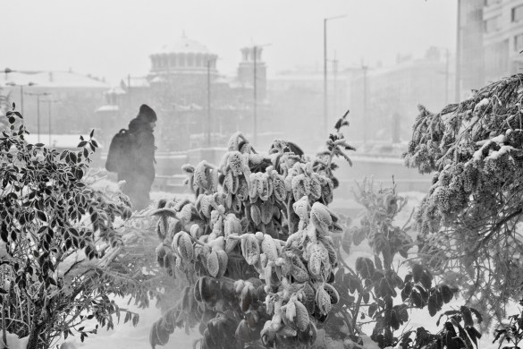 Sofia-winter-anna-pelova-black and white bulgaria