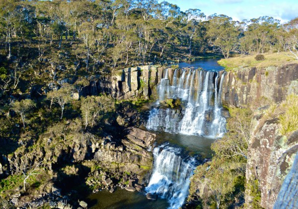 Ebor Falls Waterfall Way
