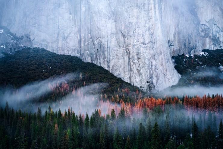 AndyBest_Yosemite-6