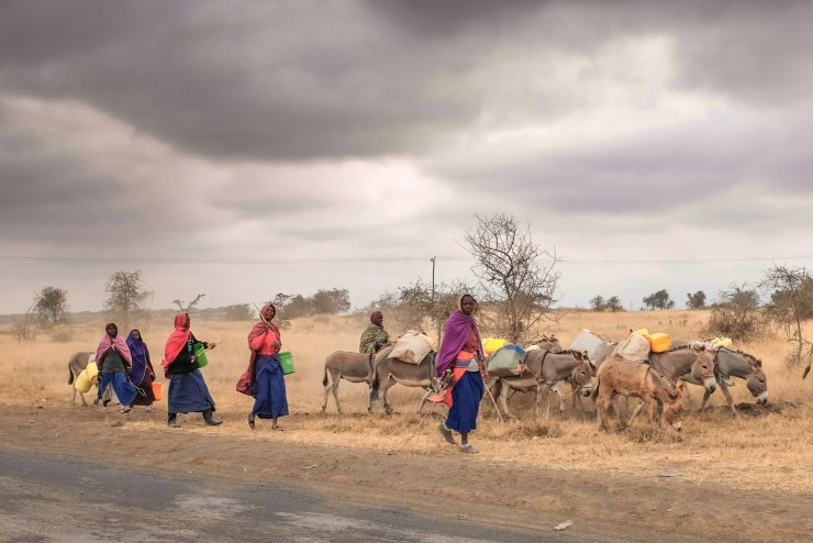 This Maasai women are on there way to collect water. It can take the woman a whole day to get back in there village. The picture was taken out of the car.