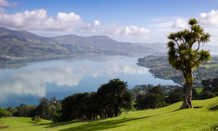 Otago Harbour, South Island, New Zealand, Otago Peninsula, South Island, New Zealand