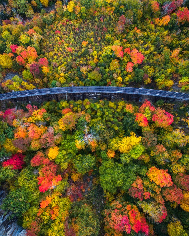 drone-over-new-hampshire-in-fall-by-michael-matti_