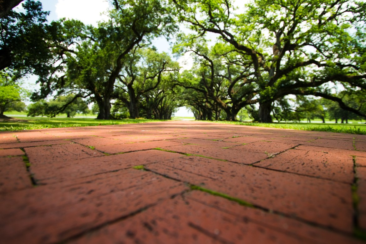 Oak Alley Plantation in St. James Parish, Louisiana often has lots of visitors wandering the grounds. Preferring not to photoshop people from the frame, I waited awhile for a clear view down the path of centuries-old oak trees.