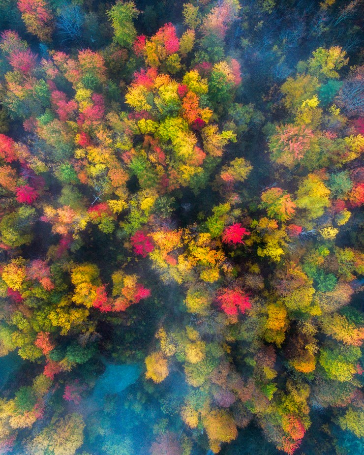 vermont-drone-over-foggy-forests-3-by-michael-matti