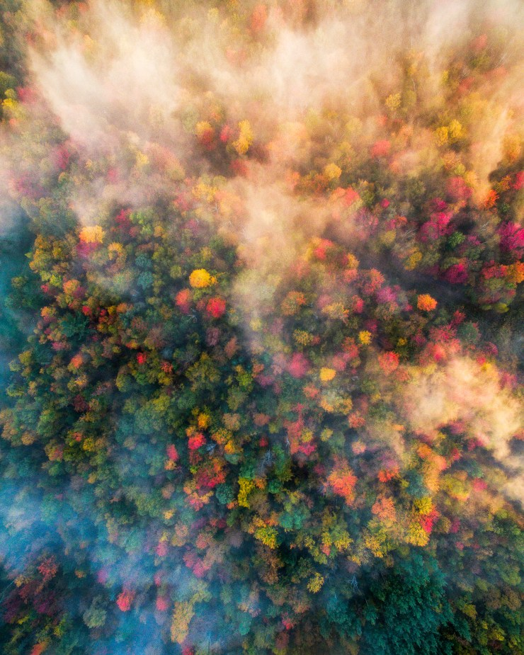 vermont-drone-over-foggy-forests-by-michael-matti
