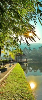 Taiping Lake Garden and Larut Mountain Upgrade to Royal Park