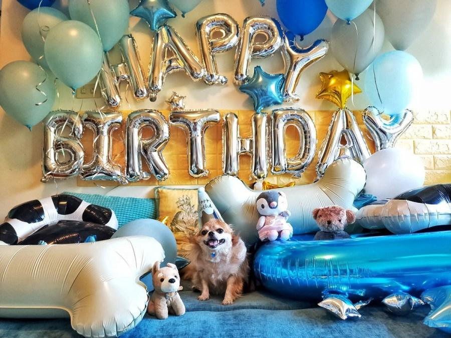 【節慶氣球/裝置藝術布置】狗狗生日派對氣球「動森主題」套裝組合@KNJ氣球商城