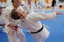Hokama Tetsuhiro teaching at Karate Kaikan, Okinawa, Japan.