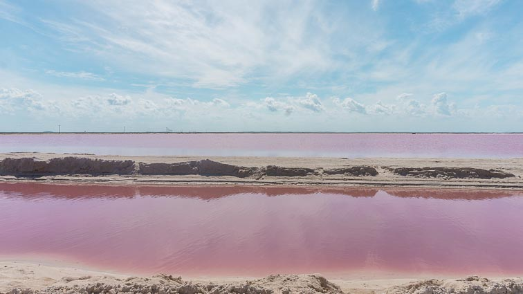 Pink lake, Las Coloradas, Mexico