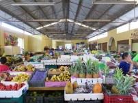 The Valladolid Market