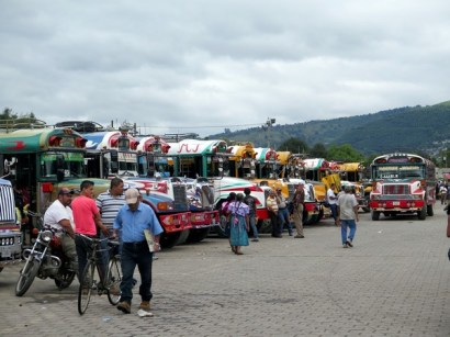 Buses at the market