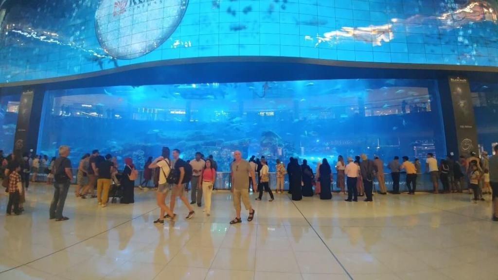 The Dubai Aquarium & Underwater Zoo, Dubai Mall