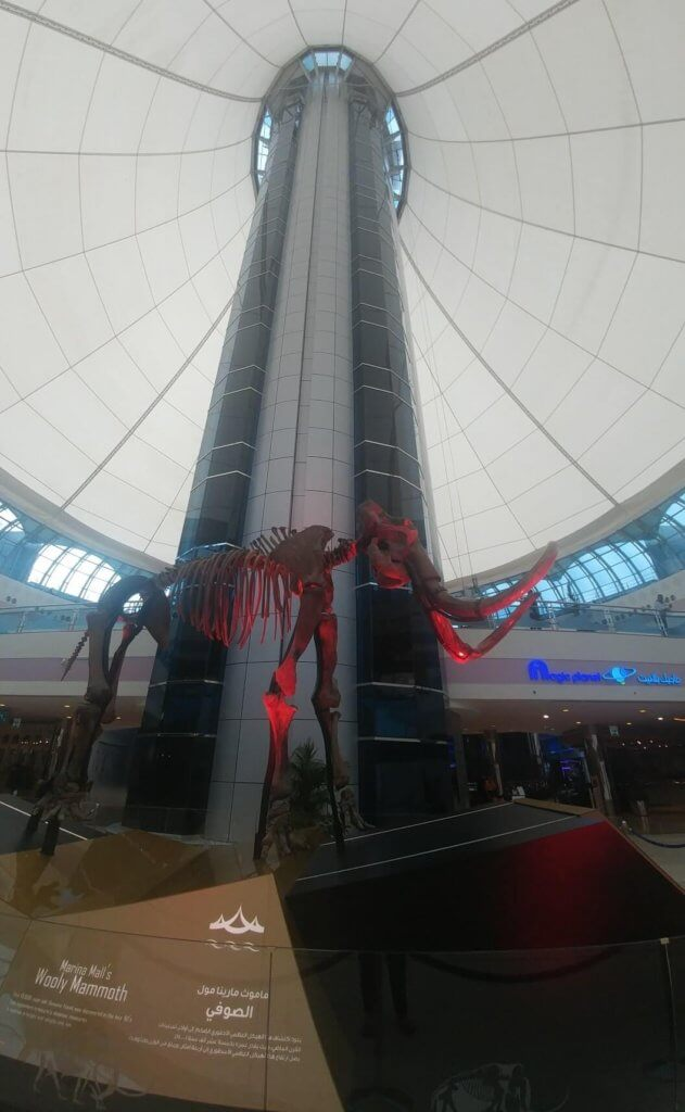 skeleton, Marina Mall, Abu Dhabi