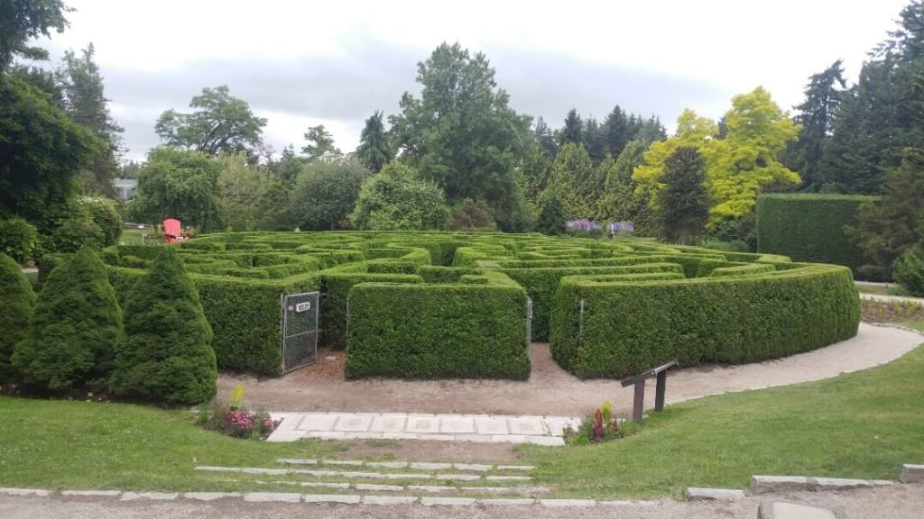 hedge maze, botanical garden