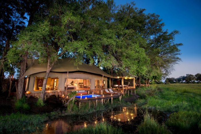 ROAR AFRICA Partners With Emirates to Create a Carbon Neutral Life-Changing Safari