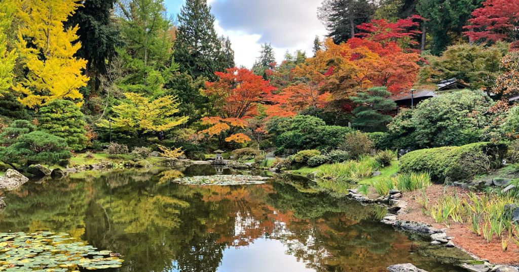 Visit the 6 most stunning Japanese gardens in America