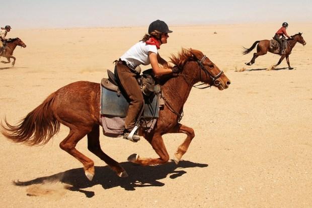 Desert, Namibia Horseback riding