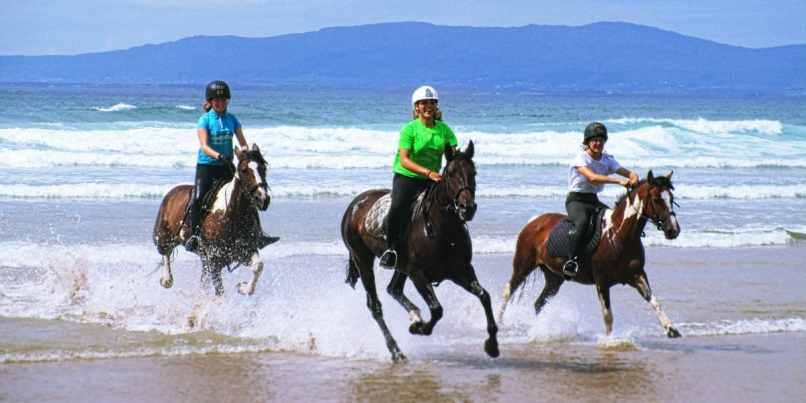 Try Horseback Riding on North Shore beach