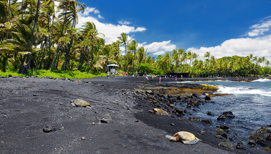Black Sand Beaches on the Big Island