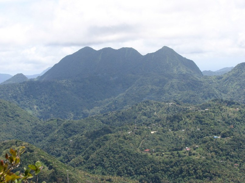 Hike Mount Gimie Things to do in St Lucia