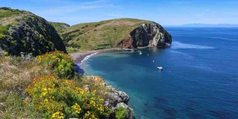 Santa Cruz Island in California: Complete Travel Guide