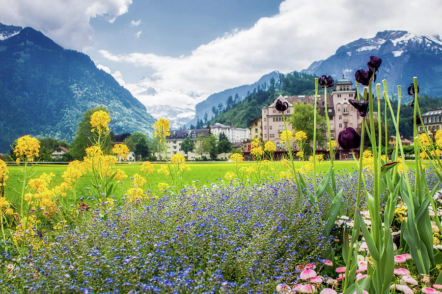 Interlaken in Switzerland Spring
