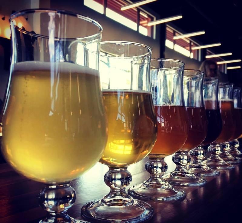 Tour around to taste Craft Beer in Denver, Colorado