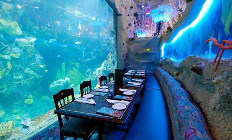 Visit Downtown Aquarium in Denver Colorado