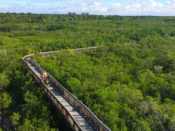 Visit Weedon Island Preserve in Tampa Florida