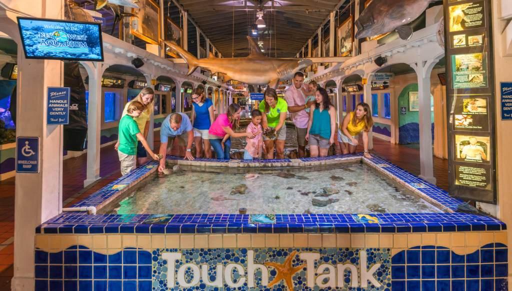 Things to do in Key West Key West Aquarium