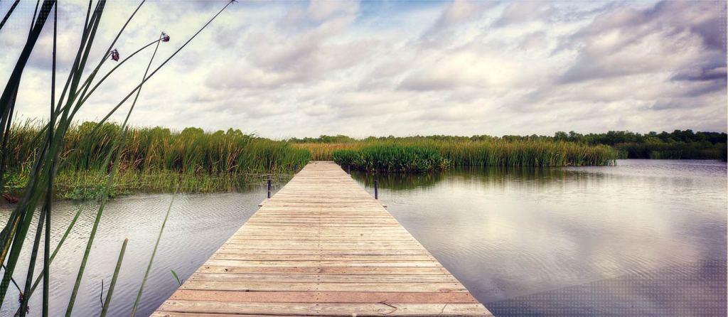Lake Waco Wetlands