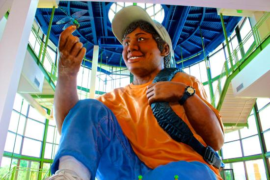 Things to do in Columbia SC with kids EdVenture Children's Museum