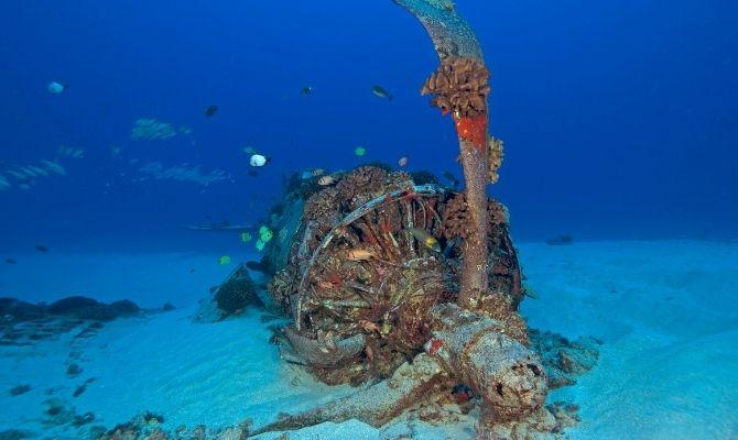 Corsair Wreck Dive Site Honolulu HI