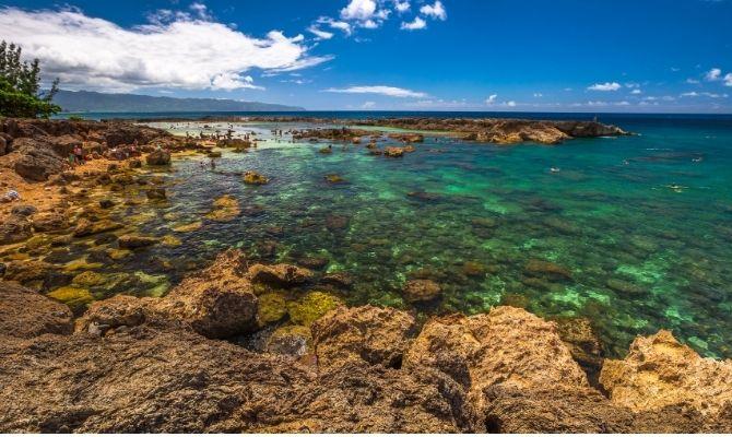Things to Do in Honolulu Shark's Cove