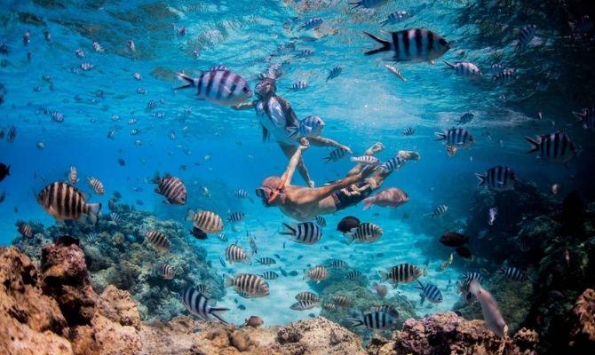 Bora Bora Dream Pictures and Lagoon Tours